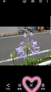 21-06-23-12-32-54-471_deco.jpg