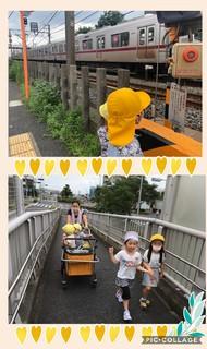 Collage 2020-07-23 11_51_29.jpg
